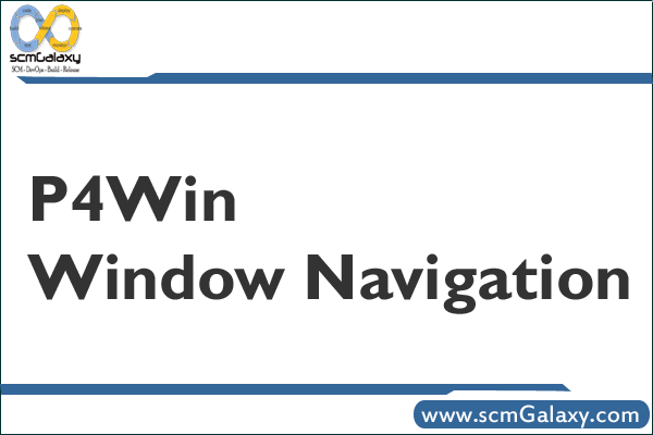 The P4Win Window Navigation | P4Win Navigation Guide