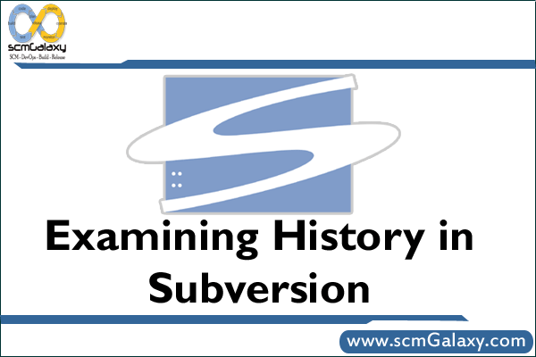 How to Examin History in Subversion (SVN)?