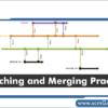 branching-and-merging