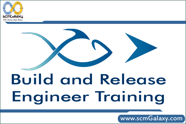 build-and-release-engineer-training