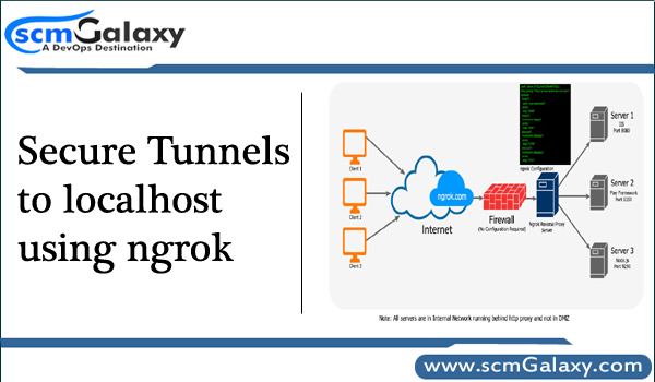 Secure Tunnels to localhost using ngrok - DevOps Tutorials