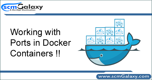 Working with Ports in Docker Containers