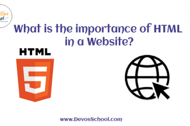 What is the importance of HTML in a Website?