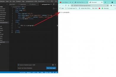 HTML: Paragraph Tag
