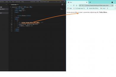 HTML: Italic tag