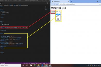 HTML: Optgroup Tag